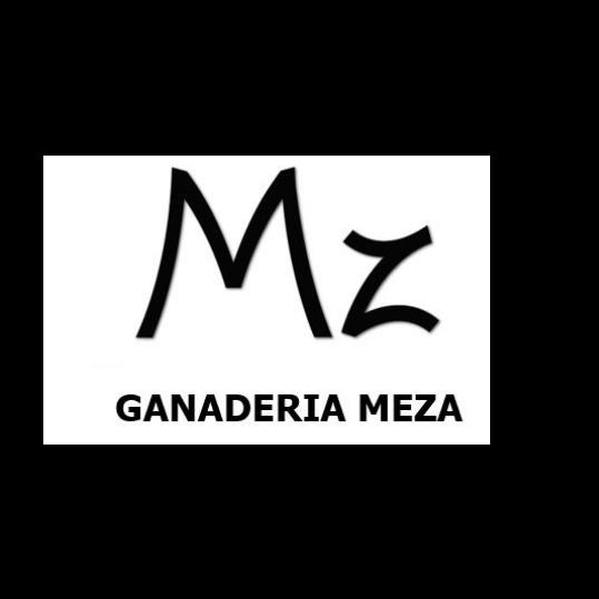 MANUEL ANTONIO MEZA LOBO